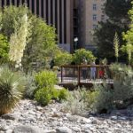 SWA incorporates Beauty, Ecology and Programming to Remake El Paso's 100-year-old Historic Park