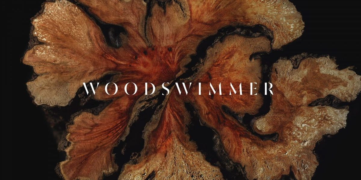 WoodSwimmer – A music video made entirely from wood