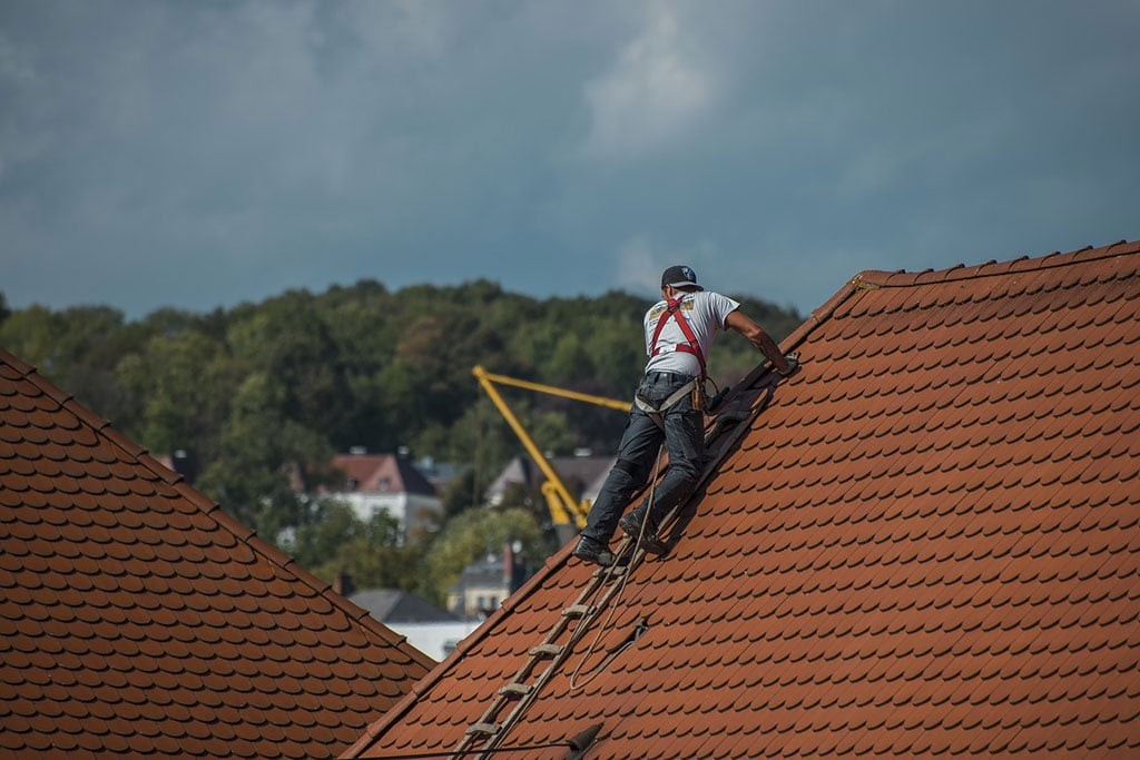 5 Roof Safety Tips for DIY Repairs and Maintenance