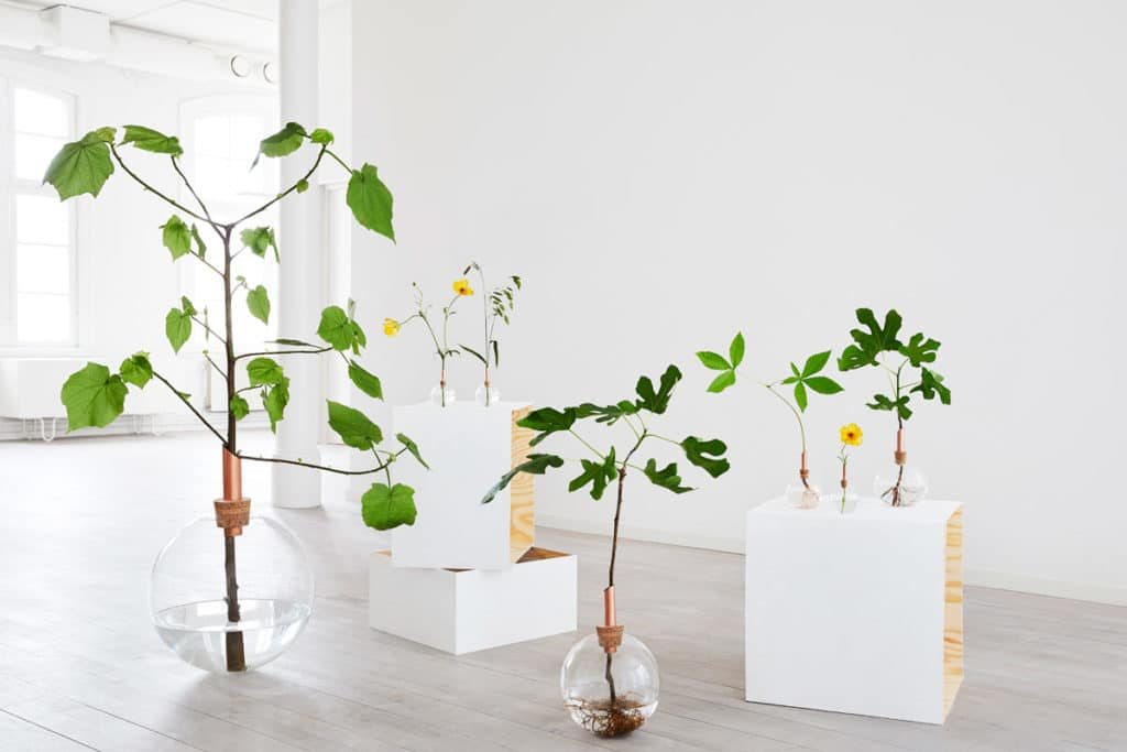 Swedish Design Pavilion, Scandinavian Form