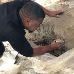 Kehinde Wiley signing Rumors of War