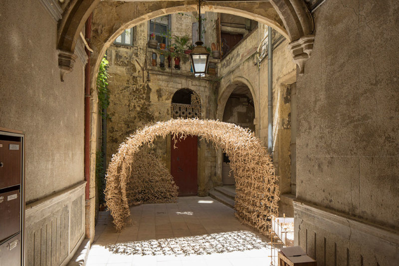 Notre nid - Maxence Grangeon - Thonon-les-bains, France