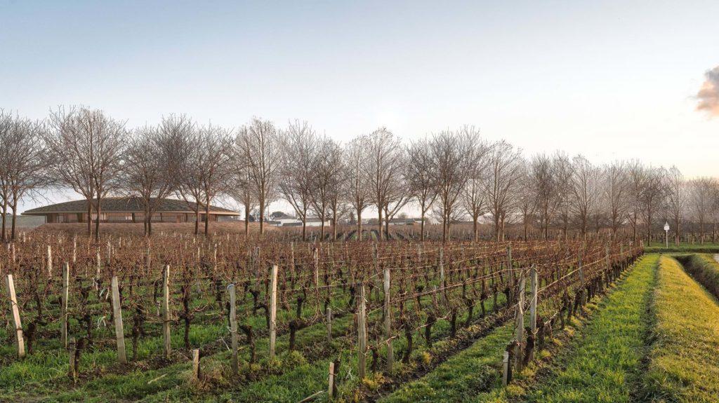 Le Dôme winery in Saint-Émilion