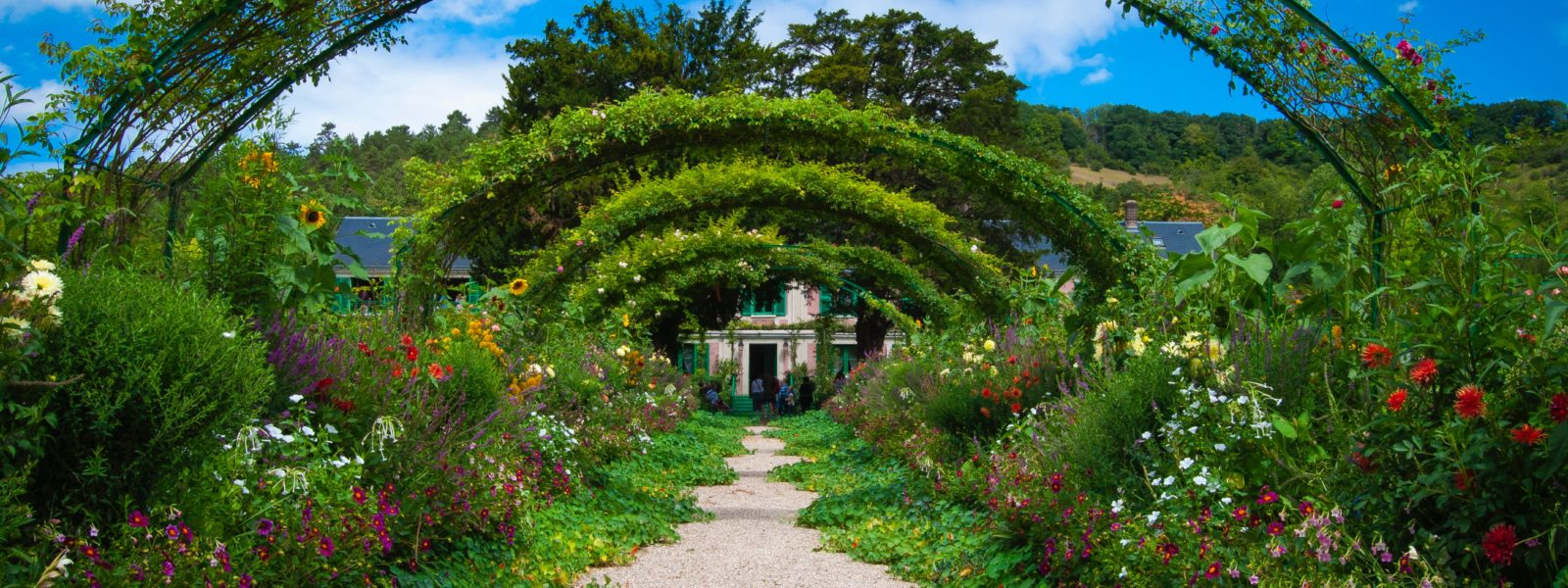 6 Exciting Garden Trends for 2020