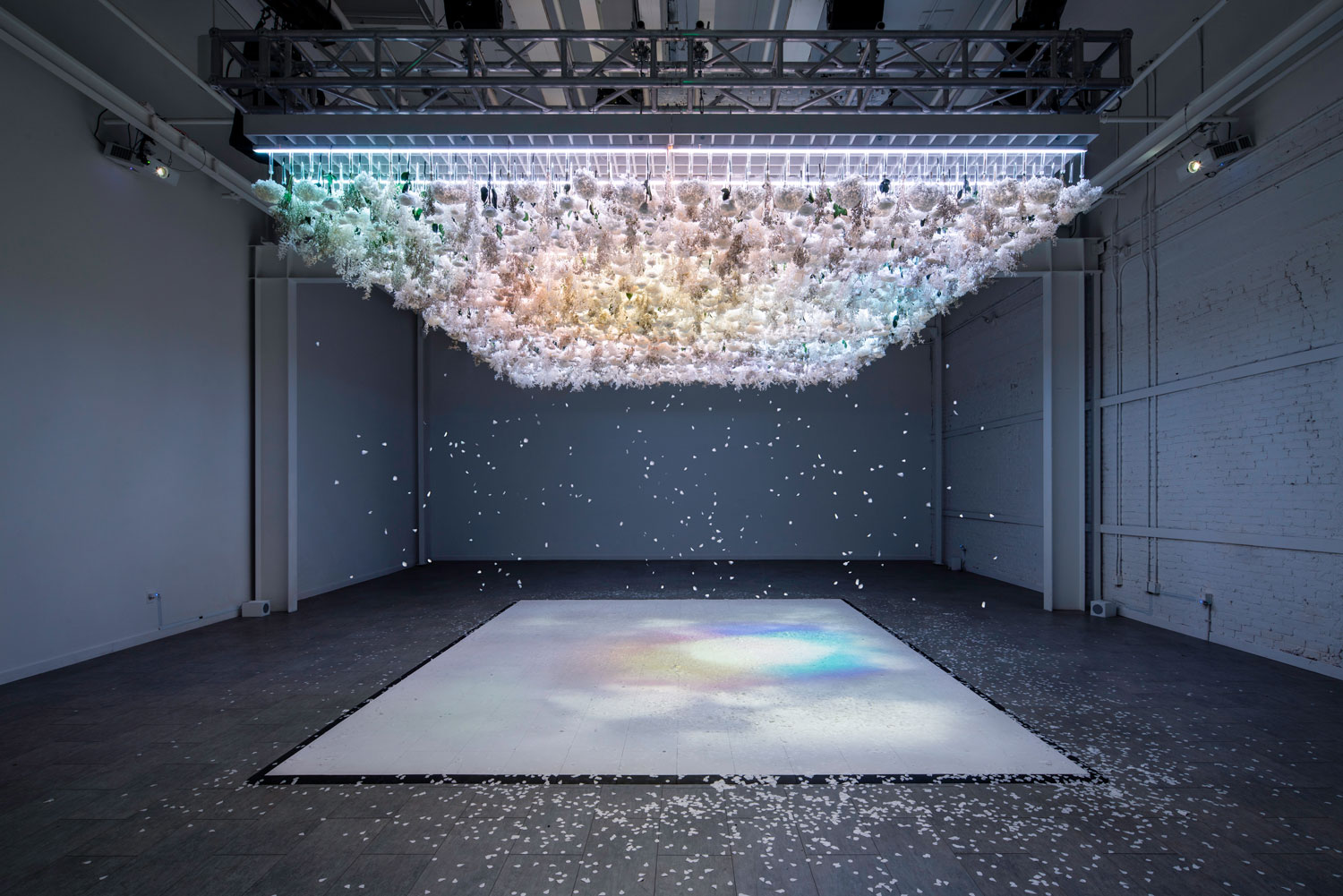The Art of Bloom - A multi-sensory exhibition that focuses on the symbiotic relationship between humans and nature