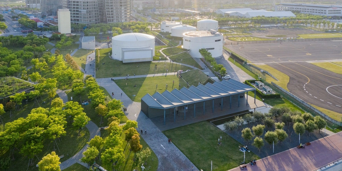 Bird's Eye View of Urban Forest and Project Space