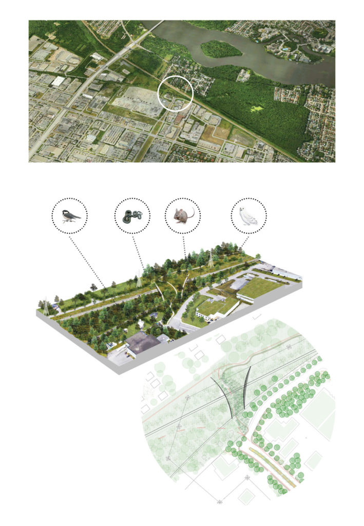 Schematic concept and site plan, Thimens Boulevard Overpass