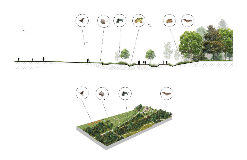Philippe-Laheurte Park_Ecological Link, section and schematic concept