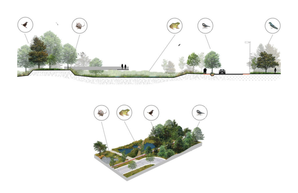 Section and schematic concept, Philippe-Laheurte Park