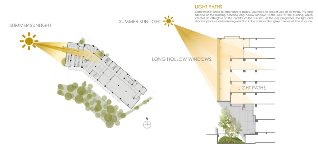 Light Paths Diagram